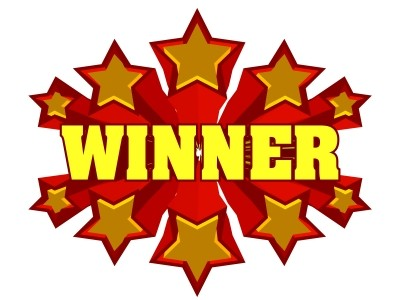 Books and Swag Winner Announced!